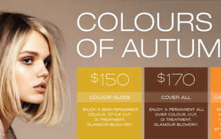 Special Offer: Colours of Autumn